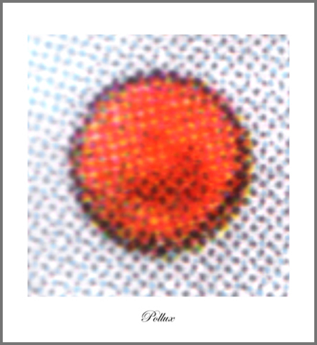 Pollux-web-b-2